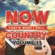 Cover for Now That's What I Call Country Volume 11