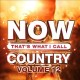Cover for Now That's What I Call Country Volume 12