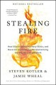 Cover for Stealing fire: how Silicon Valley, the Navy SEALS, and maverick scientists ...