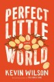 Cover for Perfect little world