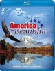Cover for America the beautiful.