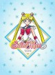 Cover for Sailor Moon S the Movie
