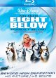 Cover for Eight below