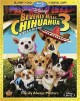 Cover for Beverly Hills chihuahua 3 viva la fiesta!