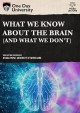 Cover for What we know about the brain: (and what we don't).