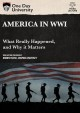 Cover for America in WWI: what really happened, and why it matters.