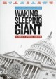 Cover for Waking the sleeping giant. The making of a political revolution