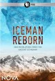 Cover for Iceman reborn