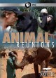 Cover for Animal reunions