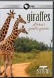 Cover for Nature: Giraffes: Africa's Gentle Giants