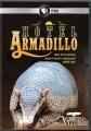 Cover for Nature - Hotel Armadillo