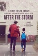 Cover for After the storm