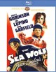 Cover for The sea wolf