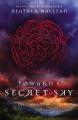 Cover for Toward a Secret Sky