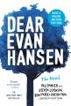 Cover for Dear Evan Hansen: the novel