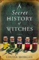 Cover for A secret history of witches