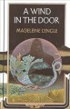 Cover for A wind in the door.