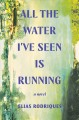 Cover for All the water I've seen is running: a novel