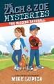 Cover for The Missing Baseball