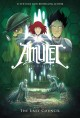 Cover for Amulet. Bk. 4, The last council