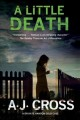 Cover for A Little Death