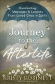 Cover for Journey to the afterlife: comforting messages & lessons from loved ones in ...