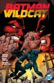 Cover for Batman / Wildcat