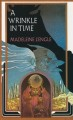 Cover for A wrinkle in time [Large Print]