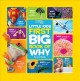 Cover for First big book of why