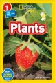 Cover for Plants