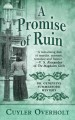 Cover for A promise of ruin [Large Print]