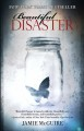 Cover for Beautiful disaster: a novel