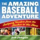 Cover for The amazing baseball adventure: ballpark wonders from the bushes to the sho...