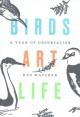 Cover for Birds, art, life: a year of observation