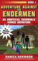 Cover for Adventure against the Endermen