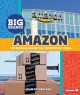 """Cover for Amazon: the business behind the """"everything"""" store"""