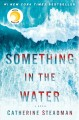 Cover for Something in the water: a novel