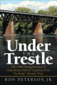Cover for Under the trestle: the 1980 disappearance of Gina Renee Hall & Virginia's f...