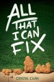 Cover for All that I can fix