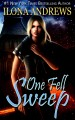 Cover for One fell sweep