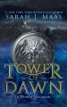 Cover for Tower of dawn