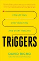 Cover for Triggers: how we can stop reacting and start healing