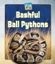 Cover for Bashful ball pythons