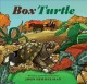 Cover for Box Turtle