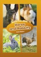 Cover for Hares and Rabbits