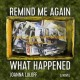 Cover for Remind me again what happened