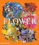 Cover for Flower: exploring the world in bloom