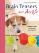 Cover for Brain Teasers for Dogs: Quick and Easy Homemade Puzzle Games