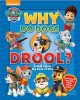 Cover for Why do dogs drool?: A Paw Patrol big book of why.