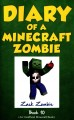 Cover for Diary of a Minecraft zombie. book 10